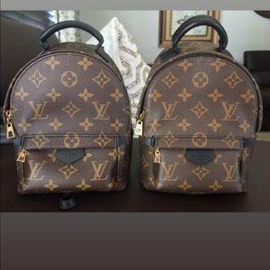 Brand new Louis Vuitton Palm Springs Mini bag!